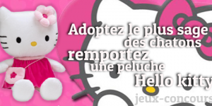 Remportez une Peluche Hello Kitty