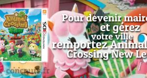Animal Crossing New Leaf en Jeu