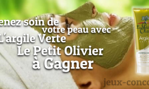 L'argile Verte Le Petit Olivier à Gagner